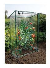 Paradajkový skleník / 6020431