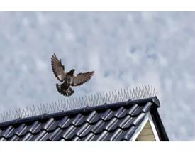 Zábrana na sedenie vtákov