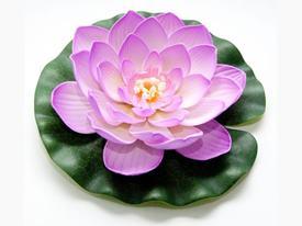 Lotus Foam Pink 20 cm / 123669