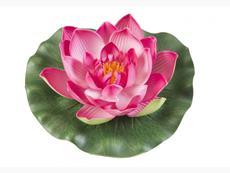 Lotus Foam fuchsia 10 cm - plávajúce lekno silno ružové