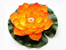Lotus Foam Orange 10 cm - plávajúce lekno oranžové