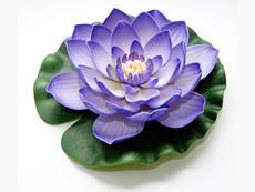 Lotus Foam purple 28 cm / 123593