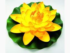 Lotus Foam Yellow 28 cm / 123674